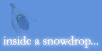 Inside a Snowdrop